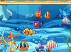 養魚遊戲2